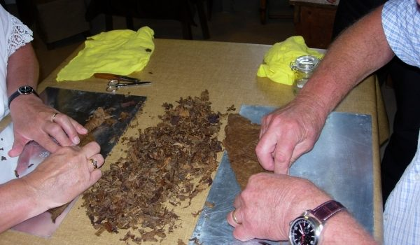 Sigaren Rollen Tijdens Workshop Sigaren Maken
